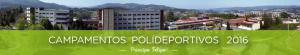 campamentos-polidep-dep
