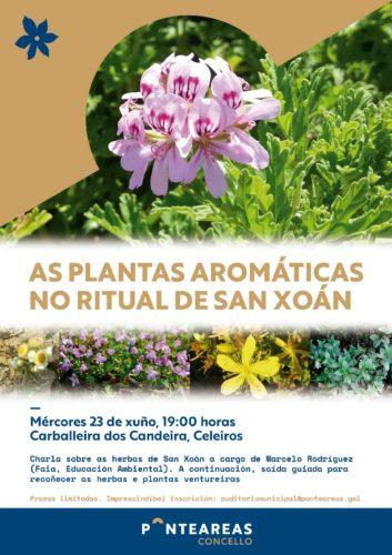 Este San Xoán coñece e recolle as plantas aromáticas desta data tan sinalada co Concello de Ponteareas